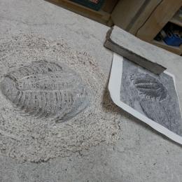 sculptures_23